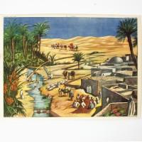 Affiche scolaire L'oasis - La rizière