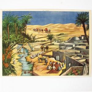 Affiche scolaire L'oasis - La rizière 1