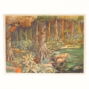 Affiche scolaire La forêt vierge - La toundra 1